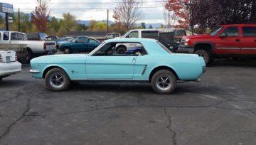 Wilson 64 1/2 Mustang